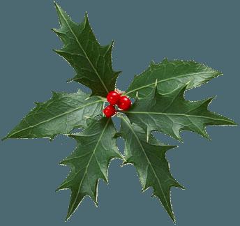 adornos christmas,navidad,png (14)
