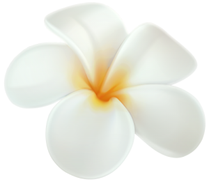 masaje hawaiano